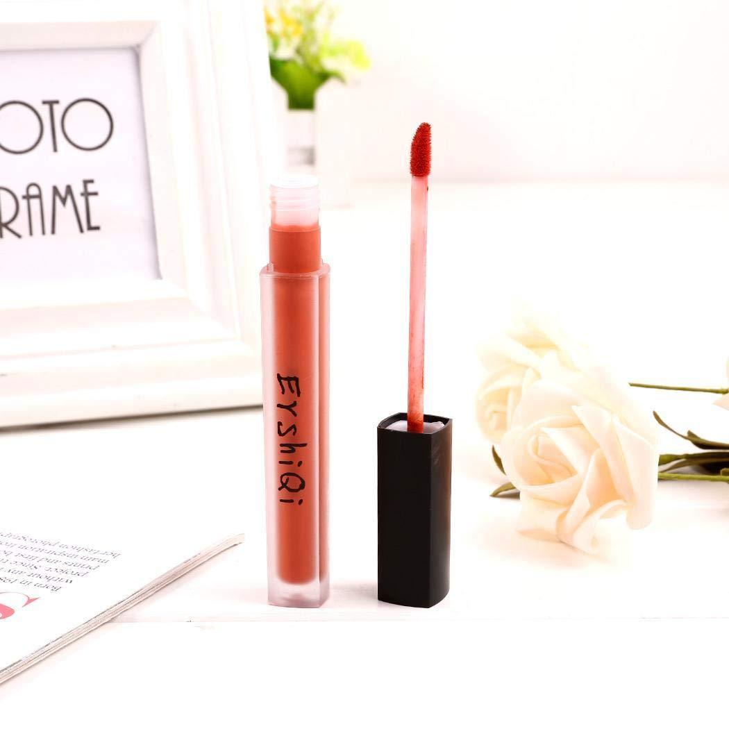 Amazon.com : Opino Women Charming Waterproof Long Lasting Velvet Matt  Liquid Lipstick Lip Gloss (Earth Color) : Beauty