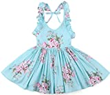 Flofallzique Blue Baby Girls Dress Vintage Girls Dress Toddler Girls Clothes Birthday Party Dress(3, Blue)