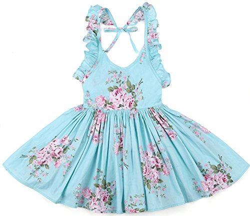 Flofallzique Toddler Girls Dress Pink Vintage Floral Backless Party Baby Sundress(4,Blue)