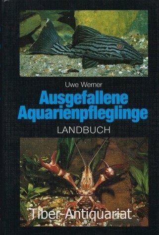 Ausgefallene Aquarienpfleglinge