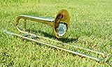 CarolBrass CTB-1005-YSS-L Mini Trombone, Slide Bb