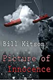 Picture of Innocence: Volume 9 (DI Mike Nash)
