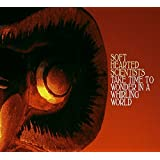 Take Time To Wonder In A Whirling World By Soft Hearted Scientists (2007-09-17)