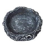 Elisona-Mini Vivid Funny Resin Reptile Tortoise Turtle Water Dispenser Dish Feeder Feeding Bowl Black