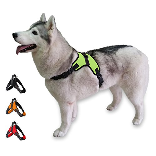 Cosy Meadow Escape Proof Dog Harness - Padded No Pull Everyday Soft Sports Vest | with Car Seat Belt Lease | No Choke | Sturdy Handle | 2019 Improved Version | Prime | Green XS Extra Small Breed (Measurements Harness Dog)