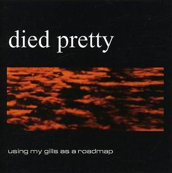 Died Pretty Using My Gills As A Roadmap Amazon Com Music