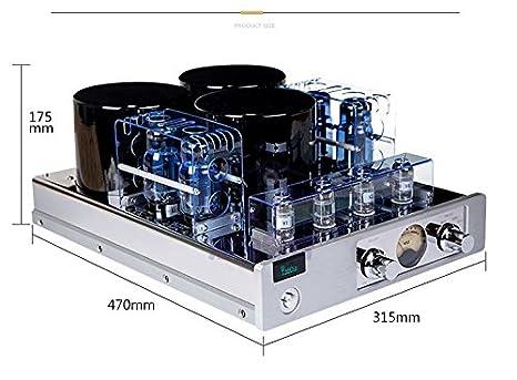 Amazon.com: Yaqin mc-13s push-pull estéreo integrados ...