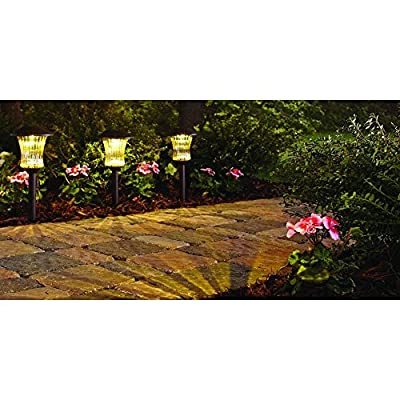 Bronze Outdoor Solar Powered LED Pathway Light 4x Brighter Than Standard Solar Light; Metal Construction with Champagne Glass; Pack of 4