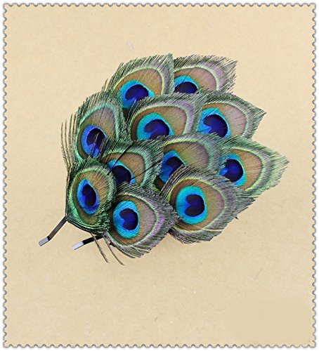 Natural Peacock Feather Fascinator Wedding Hair Clip (blue with brown)]()