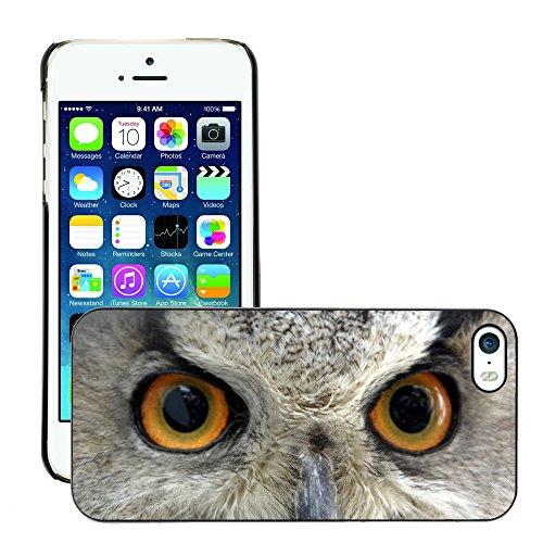 Premio Sottile Slim Cassa Custodia Case Cover Shell // V00002152 Hiboux yeux // Apple iPhone 5 5S 5G