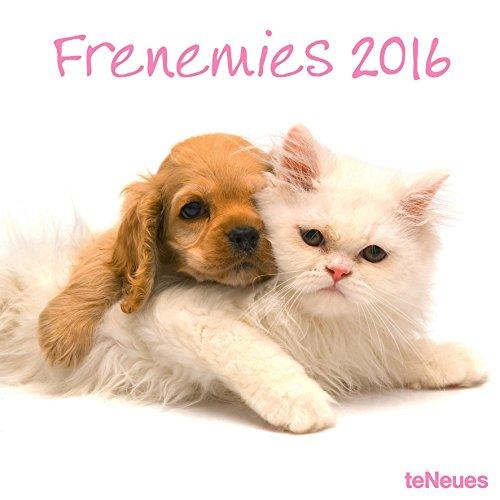2016 Frenemies Wall Calendar