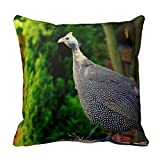 Guinea Fowl Standing In The Sun decorative pillows 18X 18Inch pillow covers