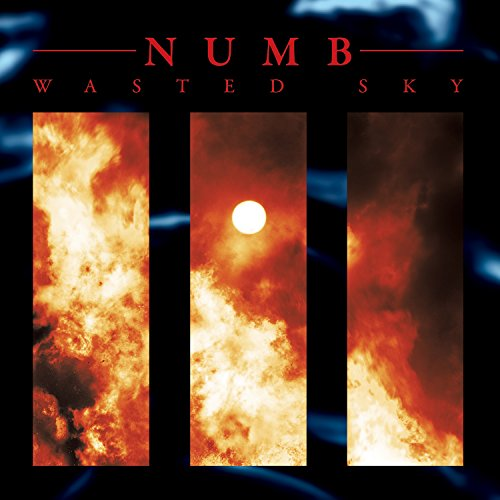 Numb - Wasted Sky Limited Edition Vinyl