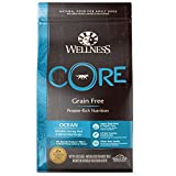 Image of Wellness Core Natural Grain Free Dry Dog Food, Ocean Whitefish, Herring & Salmon, 4-Pound Bag