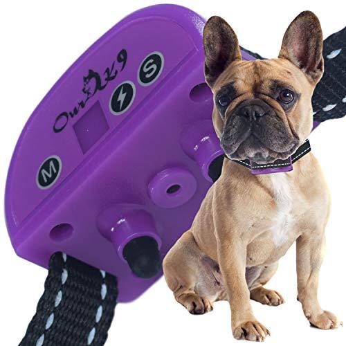 (Our K9 Training Made Easy Worlds Safest Bark Collar - 7 Levels of Adjustment for Vibration & Shock & Sensitivity Plus 5 Levels on Sound + Ultrasonic (Purple))