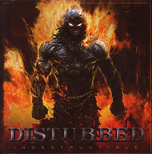 Indestructible Album by Disturbed