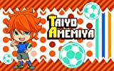 Inazuma Eleven GO pocket tissue cover 2 Amemiya sun (japan import) by Ensky
