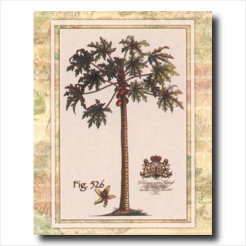 Tropical Palm Tree Fig 526 Contemporary Wall Picture 16x20 Art Print