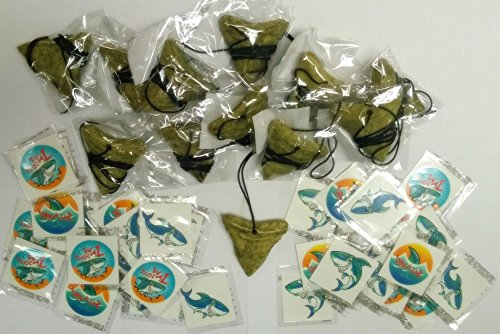 Price comparison product image Shark Party Favor Set- 12 Shark Tooth Necklaces and 36 Tattoos