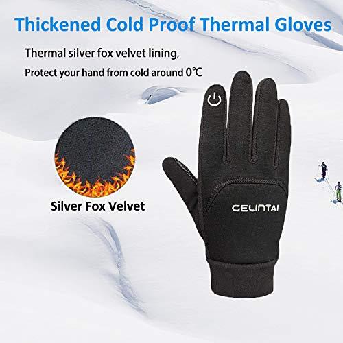 gloves (Medium)