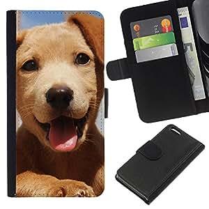 Golden Retriever Puppy Happy Dog Friendly - la tarjeta de Crédito Slots PU Funda de cuero Monedero caso cubierta de piel Apple iPhone 5C
