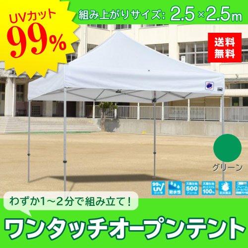 E-ZUP イージーアップ イージーアップテント 組み立てテント デラックス(アルミタイプ) [DXA25-17GR] 2.5m×2.5m 天幕色:緑 グリーン 防水 防炎 紫外線カット99% B07BT7JFJB