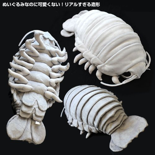 Amazoncom Tstadvance Sea Creature Giant Isopod Realistic Stuffed