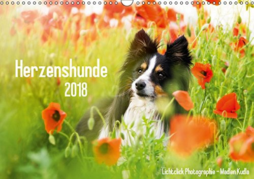 Herzenshunde 2018 (Wandkalender 2018 DIN A3 quer): Hunde fotografiert von Madlen Kudla (Monatskalender, 14 Seiten ) (CALVENDO Tiere)