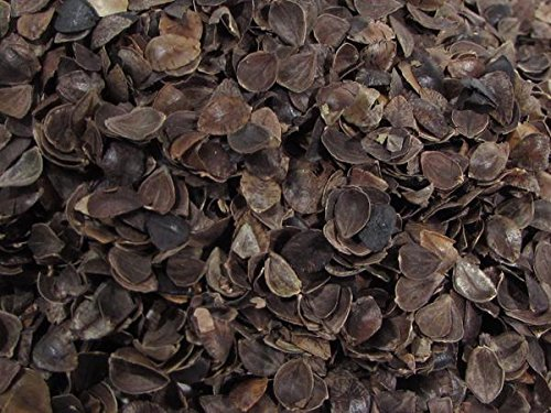 buckwheat-hulls-medium-grade-5-pounds