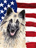 Cheap Caroline's Treasures SC9116GF USA American Flag Belgian Tervuren Flag, Small, Multicolor