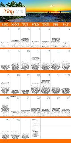 2016 Daily Verse Wall Calendar