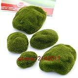 200 pcs/bag moss seeds,moss ball,outdoor grass seeds,Garden Decor plant for home garden