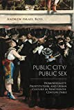 "Andrew Israel Ross, ""Public City/Public Sex: Homosexuality, Prostitution, and Urban Culture in Nineteenth-Century Paris"" (Temple UP, 2019)"