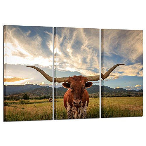 Decor Canvas Artwork - Kreative Arts - Large Modern Canvas Wall Art for Home and Office Decoration Animal Pictures Print Art on Canvas Texas Longhorn Canvas Prints Giclee Artwork for Wall Decor 16x32inchx3pcs