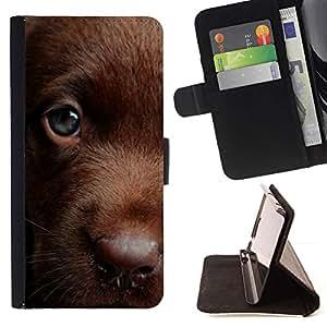 Momo Phone Case / Flip Funda de Cuero Case Cover - Retriever chocolate Labrador de oro; - Samsung ALPHA G850