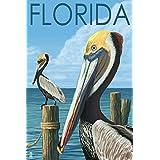 Brown Pelicans - Florida (12x18 Art Print, Wall Decor Travel Poster)