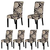 ColorBird Victorian Style Spandex Fabric Chair Slipcovers Removable Universal Stretch Elastic Chair Protector Covers for Dining Room, Hotel, Banquet, Ceremony (Set of 6, Baroque)