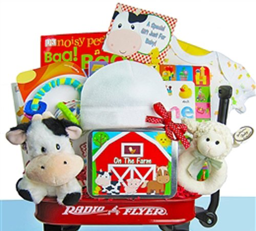 Day on the Farm | Baby Gift Basket in Mini Radio Flyer Wagon (Shower Wagon Baby)