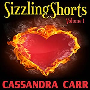Sizzling Shorts Audiobook