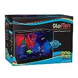 GloFish 3 Gallon Aquarium Kit w/ Cover, Frame, LEDs, Power & Filter