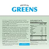 Premium Greens Vegetable Smoothie Powder with Prebiotics by Healthy Fit Labs (125g) | Organic Superfood Supplement | Powerful Herbal, Sea Vegetables, Whole Grains | Detoxify, Energize, Alkalize