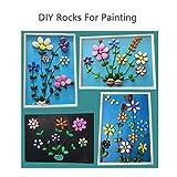Lifetop 50pcs Tiny Painting Rocks DIY Rocks for