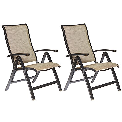dali Folding Chairs with Arm, Patio Dining Chairs Cast Aluminum Reclining Folding Chair Outdoor Furniture 2 Pcs Set -