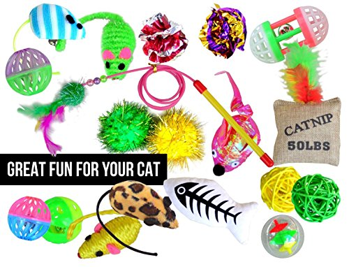 Twenty Popular Pieces (Interactive Cat Toys Variety Pack - 20 Piece Popular Assortment to Keep Your Pet Feline Occupied for Hours | Includes Balls, Bells, Mice, Fish Catnip Cushion, Teaser and More)