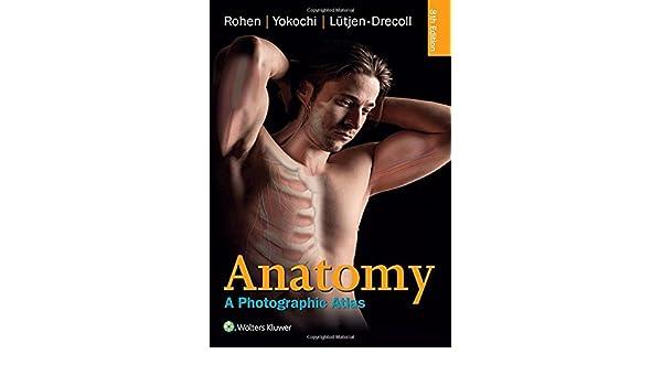 Anatomy: A Photographic Atlas Color Atlas of Anatomy a Photographic ...
