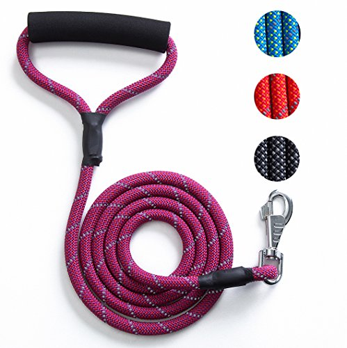 eash Nylon Rope Dog Lead with Comfortable Padded Handle -4FT/6FT Reflective Leash for Night Safety for Small Medium Large Dogs 4FT Purple (Strong Rope Handle)