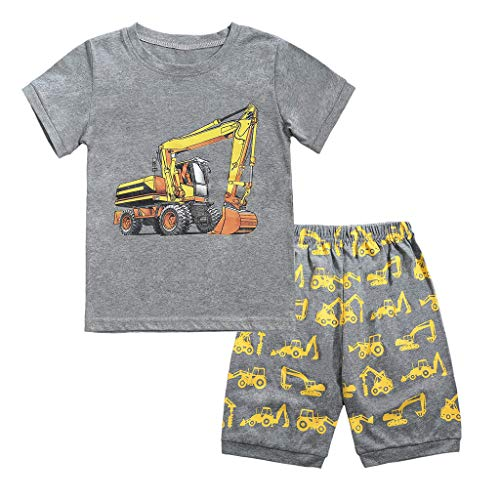 Hot Sale Toddler Baby Girls Boys Kids Summer Pajamas Outfit Clothes Cartoon Cat Zebra Print Tops Shorts 2pcs Set (Gray -1, 3T)