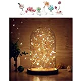MUCHER Glass Bell Jar Display Dome Bamboo Base USB Bedside Table Lamp with LED Fairy Starry String Lights Ideal for Decoration Anywhere.(Warm White), Borosilicate 3 W