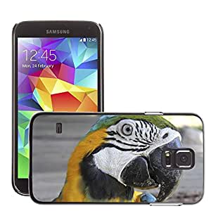 Super Stella Slim PC Hard Case Cover Skin Armor Shell Protection // M00107050 Macaw Parrot Tropical Exotic // Samsung Galaxy S5 S V SV i9600 (Not Fits S5 ACTIVE)