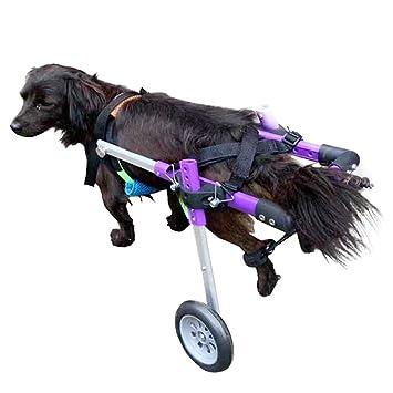 Teabelle Silla de Ruedas para Perros de 2 Ruedas Kit de Carrito de Asistente para Caminar para Discapacitados Mascotas Cachorro Caminante XS: Amazon.es: ...